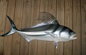Roosterfish 60 inches Half Mount Fiberglass Fish Replica