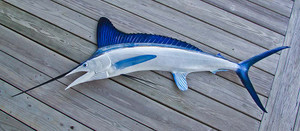 White Marlin 80L inch half mount fiberglass fish replica