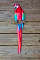 Scarlet Macaw 32 inch half mount fiberglass replica