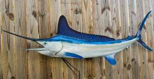White Marlin 85L inch full mount fiberglass fish replica