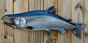 Silver or Coho Salmon replica