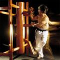 Wing Chun Wooden Dummy (Mook Yak Jong)