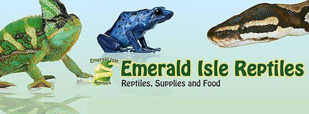 Emerald Isle Reptiles Royal Pythons Lizards Vivariums Food