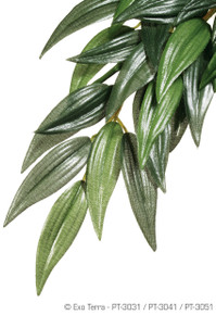 Exo Terra Hanging Silk Plant - Rucus