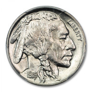 Buffalo Nickel bag of 10 coins (Fine condition)