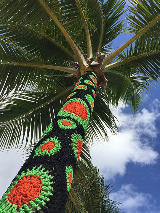Yarn Bomb Palm Tree by Carol Hummel 2017