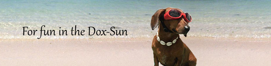 Dachshund Lovers Dox-Sun Beach Towels and Sunglasses