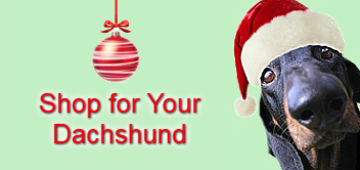 Shop Gifts for Dachshunds Black Tan Doxie in Santa Hat