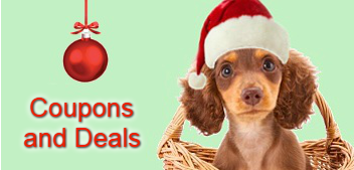 Dachshund Gifts Coupon Codes and Discounts