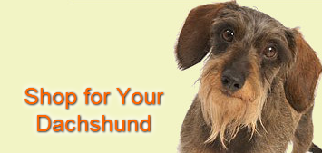 Shop Gifts for Dachshunds