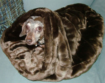 Dachshund Snuggle Bag Minky Burrow Bed