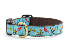 Cardinals Dog Collar Dachshund Collar