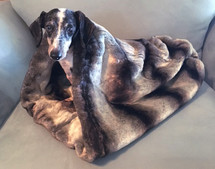 Dachshund Snuggle Bag Minky Bag Dog Bed Burrow Bed Dream Sack Weenie Pocket