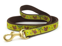 Dachshund Squirrels Dog Collar and Leash