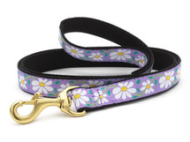 Dachshund Daisy Floral Dog Collar and Leash