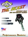 beast-1000-flyer-cover-copy.jpg