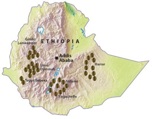 Ethiopia Gera Wet Process Medium Roast
