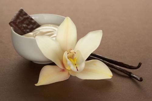 Creamy French Vanilla