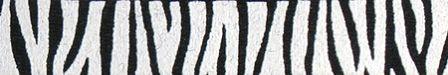 zebrastripe.jpg