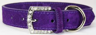 Leather and Suede Crystal Buckle Dog Collars
