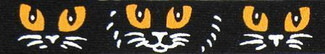 Scary Cat Faces Beastie Band Cat Collar