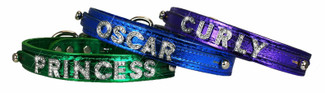 Sliders Designer Dog Collars- Medium to Large Dogs