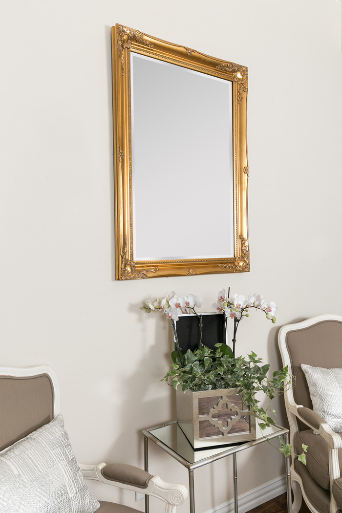 Maissance Traditional Large Wall Mirror , Antique Gold