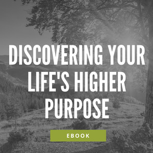 Discovering Your Life's Higher Purpose ebook