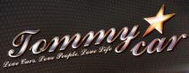 logo detailing company