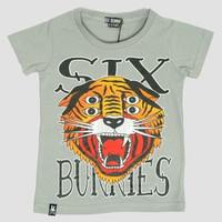 Tiger 4 eyes grey six bunnies