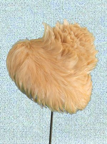 Unusual feathered hat