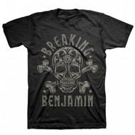 Breaking Benjamin - Skull