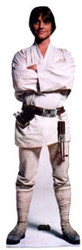 Luke Skywalker A New Hope Cardboard Stand Up