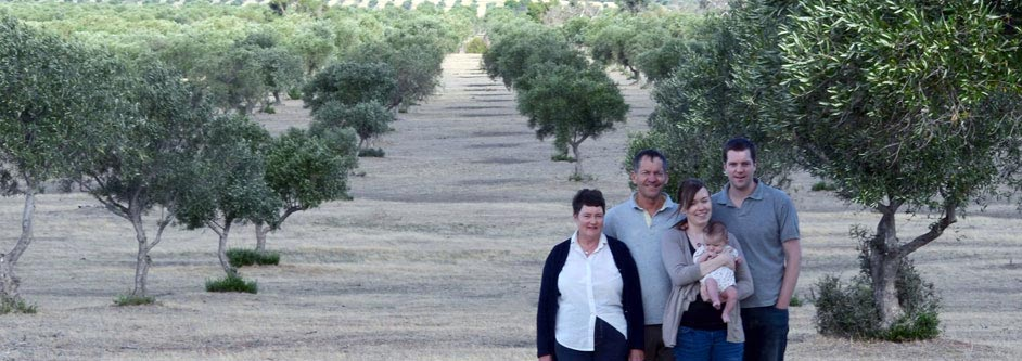 Australian family owned olive grove