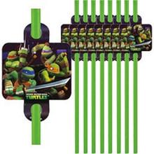 Teenage Mutant Ninja Turtles 16 Straws Green Favors Party TMNT