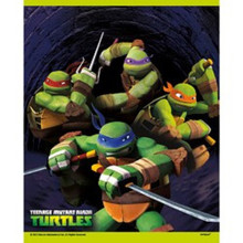 Teenage Mutant Ninja Turtles Loot Favors Party Bags 8 ct