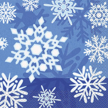 Winter Snowflake 16 Christmas Luncheon Napkins Frozen Party