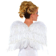 Feather Wings 22 inch White Angel Costume