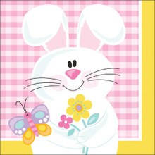 Easter Picnic 16 Ct Beverage Napkins Spring Party Bunny Butterfly