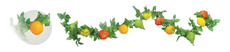 6' Fruit Garland