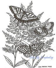 3 Butterfly Astilbe Flower Wood Mounted Rubber Stamp Northwoods Rubber Stamp New