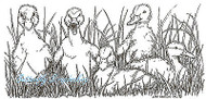 Baby Ducks In Grass Spring Wood Mounted Rubber Stamp Northwoods Stamp O8455 New