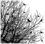 Bird Tree CoverCard Background Unmounted Rubber Stamp Impression Obsession CC102