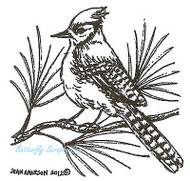 Blue Jay On Pine, Wood Mounted Rubber Stamp NORTHWOODS - NEW, C8890