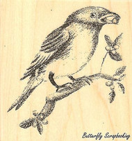 Bluebird, Wood Mounted Rubber Stamp IMPRESSION OBSESSION - NEW, E7746