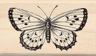 BUTTERFLY B Wood Mounted Rubber Stamp Brenda Walton by Inkadinkado NEW