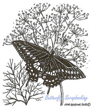 Butterfly Black Swallowtail Dill Wood Mounted Rubber Stamp NORTHWOODS M8965 New