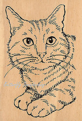 CAT Feline Fun Wood Mounted Rubber Stamp STAMPENDOUS Stamp P242 New