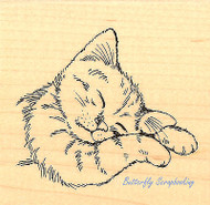CAT Feline Sleepy Wood Mounted Rubber Stamp STAMPENDOUS Stamp Q207 New