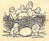 Chicks In Nest With Eggs, Wood Mounted Rubber Stamp NORTHWOODS - NEW, M7938